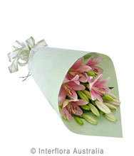 Roll Wrap of Cut Flowers (BFG04)